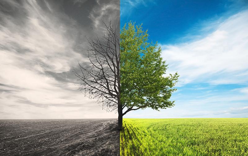 外部環境に適応して行く柔軟性が会社を永続させる!