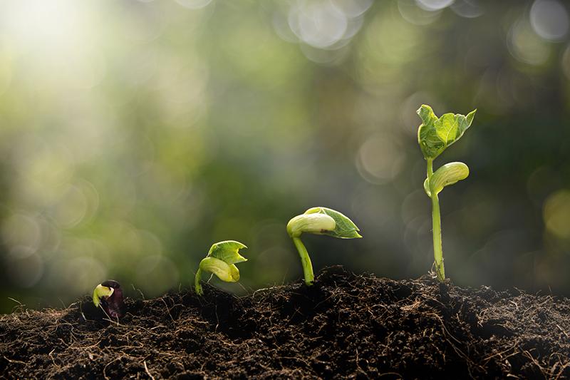 私たちは、「企業の成長促進剤」なので、日本の未来のためにも「いい会社」を支援していきたい