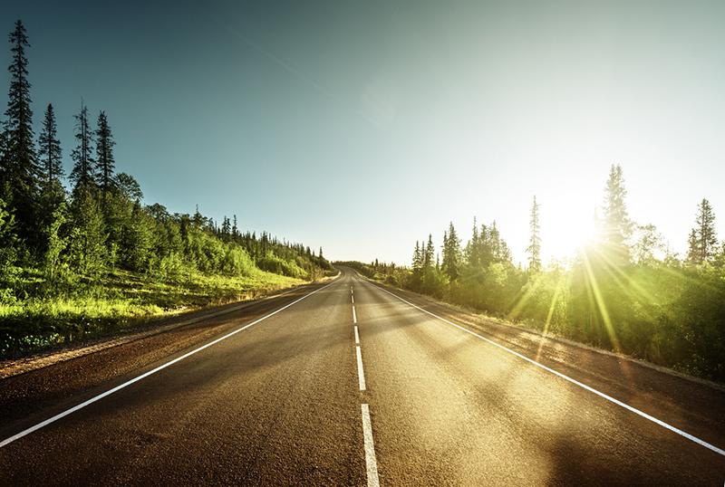 自分の意思で何事もがんばれば、道は開ける