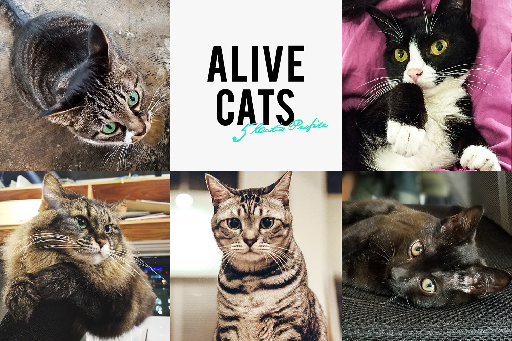 Alive Cats