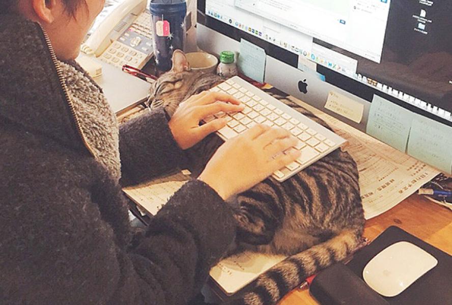 のびたはキーボード<br /> <br />