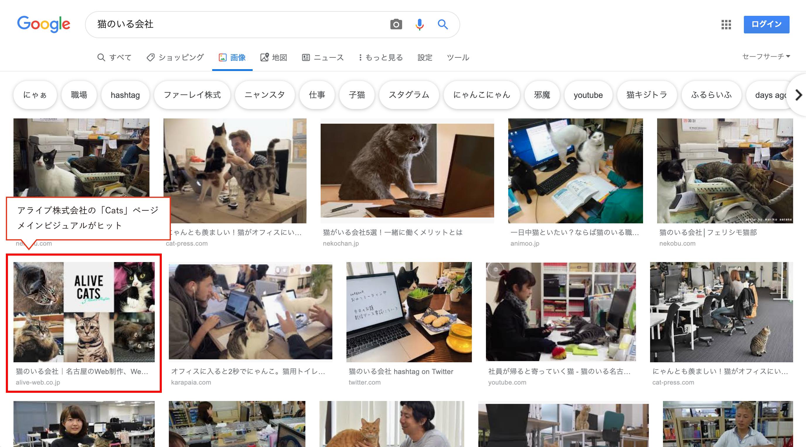画像検索画面「猫のいる会社」