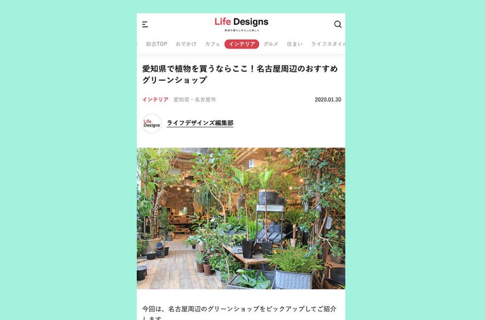 観葉植物記事